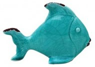 angelfish teal2